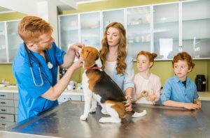 family at vet after adopting a dog